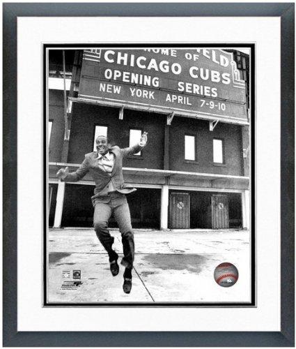 Chicago Cubs Wrigley Field Ernie Banks MLB Stadium Photo 12.5