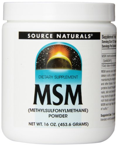 Source Naturals MSM Methylsulfonylmethane Powder, Important Source of Bioavailable Dietary Sulfur, 1 Pound