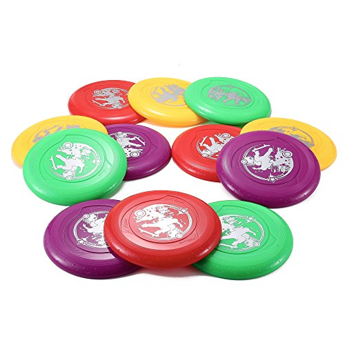 Plastic Flying Disc (9