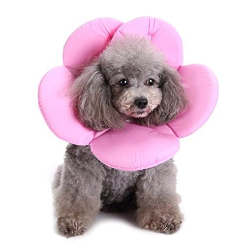 Tutuba Recovery Pet Cone E-Collar Adjustable Flower Shape Protective Collar for Cat or ()