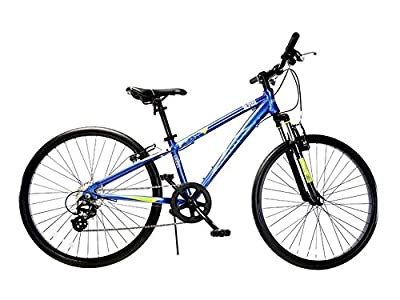 """Ryda Bikes Alpine - 24"""" Blue Youth Unisex Mountain Bike - 8 Speed All Purpose Bicycle for Kids and Teens with Flat Proof Tires"""