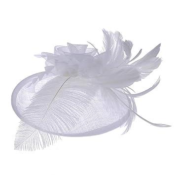 Zywtrade Malla Gasa Tocado de Novia Personalizado Retro Banquete de Lino Sombrero de Lino Mujeres Adornos de Plumas Banquete Tocado,Flesh: Amazon.es: Hogar