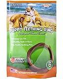 NATURAL POLYMER N-Bone Puppy Teething Ring Pumpkin Flavor (6-Pack)