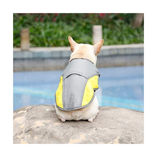 """Rantow Dog Cooling Vest Harness Outdoor Puppy Cooler Jacket Reflective Safety Sun-proof Pet Hunting Coat, Best for Small Medium Large Dogs (XS(Chest 14.17""""-17.33"""")) 5"""