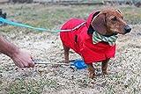 P-Scoop Dog Urine Collector