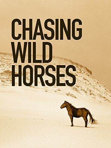 (Chasing Wild Horses)