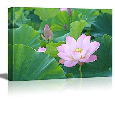 Canvas Prints Wall Art - Blooming Lotus Flower Surrounded by Lotus Leaves | Modern Wall Decor/Home Decoration Stretched Gallery Canvas Wrap Giclee Print. Ready to Hang - 16