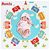 Baby Monthly Milestone Blanket/Baby First Year Blanket (Baby Monthly Milestone Blanket)