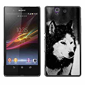 Shell-Star ( Dog Siberian Husky Alaskan Malamute Winter Pet Animal ) Fundas Cover Cubre Hard Case Cover para SONY Xperia Z / L36H / C6602 / C6603 / C6606