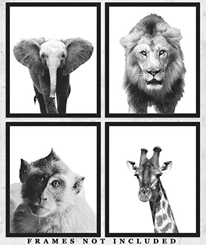 Safari Animals Wall Art Prints: Adorable Nursery Room Decor - Set of Four (8x10) Unframed Pictures - Great Gift Idea for Nursery and Kids Room]()