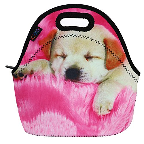 Insulated Lunch box Bag Neoprene Cooler warm Pouch Tote bag For School work