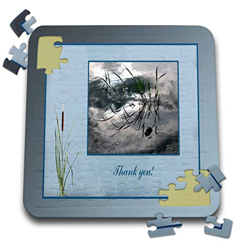 3dRose Beverly Turner Thank you Design - Thank you, Frog in a Pond Photo, Cattails Accent, Blue Frame - 10x10 Inch Puzzle (pzl_286999_2)