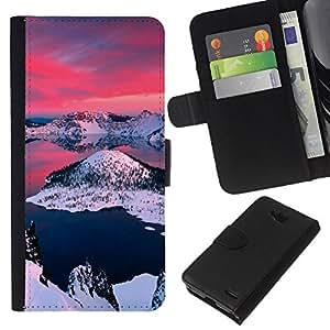 LECELL--Cuero de la tarjeta la carpeta del tirón Smartphone Slots Protección Holder For LG OPTIMUS L90 -- Alaska Aurora Borealis --
