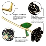 Ejoyous-24K-Gold-Plated-Black-Rose-Forever-Preserved-Real-Rose-Gift-for-Lover-Mom-Wife-Daughter-Girl-Friend-Unique-Present-on-Valentines-Day-Anniversary-Birthday-Proposal-Black-with-Stand