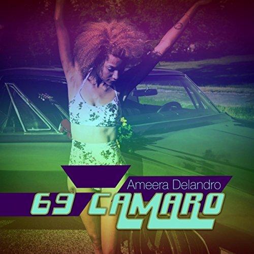 69 Camaros - 9