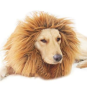 Happy Will Lion Mane Wig for Dog Festival Halloween Christmas Party Fancy Mane Wig with Ears for Dog and Cat (Neck Within 60cm-80cm,Adjustable)