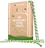 Tranquilo Biodegradable Paper Straws - Green (Box of 100)