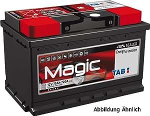 IPSA TM82P Batería de arranque
