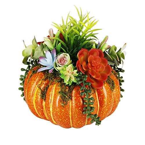 winemana Thanksgiving Decorations Pumpkin with Plastic Succulents, 8.8″ x 9.8″ Bright Orange Artificial Pumpkin and Plastic Succulents Fall Autumn Decor for Office Bedroom Kitchen Party Harvest Day
