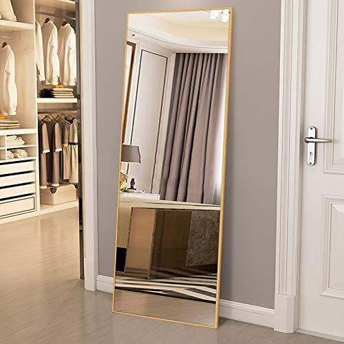 ElevensMirror Full Length Mirror Dressing Mirror 63x20 Large Rectangle Bedroom Floor Mirror Wall-Mounted Mirror Hanging Leaning Against Wall Champagne