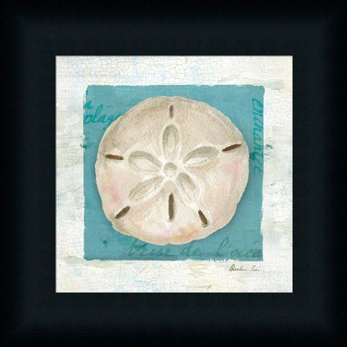Blue-Seashell-III-by-Danhui-Nai-Bathroom-Spa-Bath-Room-Art-Print-Framed