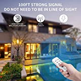 Syantek Remote Control Outlet Wireless Light Switch