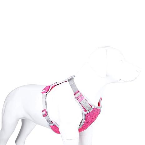 XDYFF - Arnés Ajustable sin tirones para el Pecho del Perro ...