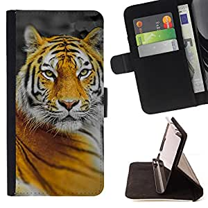 DEVIL CASE - FOR Apple Iphone 6 PLUS 5.5 - Tiger Big Cat Jungle Nature Orange Yellow - Style PU Leather Case Wallet Flip Stand Flap Closure Cover