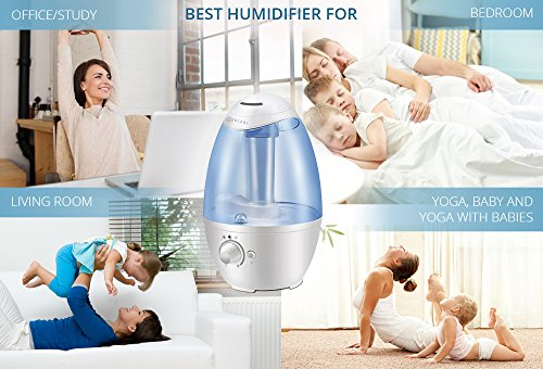 Ultrasonic Cool Mist Humidifier Best Air Humidifiers For Import It All