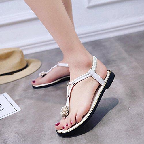 Jitian Jitian Sabot Verde Donna Sabot sandali sandali Donna ZTw8dqwxt