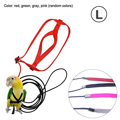 (Parrot Bird Harness Leash Flying Anti-bite Traction Rope Bird Training Outdoor Carrying for Psittacus Erithacus Scarlet Macaw Parrots Birds)
