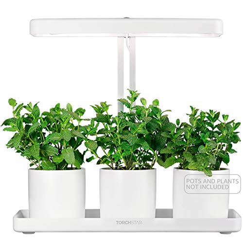 TORCHSTAR Indoor Garden Kit, Herb & Kitchen Garden Grow Light, Auto-Timer Function, Height Adjustable CRI 95 Real Color for Plant Enthusiasts, Rosemary, Lavender, Seed, Pod Ornamental DIY Gift