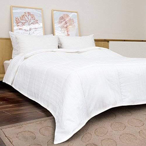 HBOEMDE All Season Down Alternative Quilted Comforter With 2