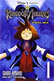 Kingdom Hearts: Final Mix, Vol. 1 - manga