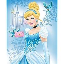 "Silk Touch Sherpa Twin Blanket Disney and Marvel Designs 60""x80"" (Cinderella)"