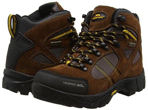 Ridgeway Marron Randonnée De Hautes Chaussures Femme Trespass brown YqgxwdY