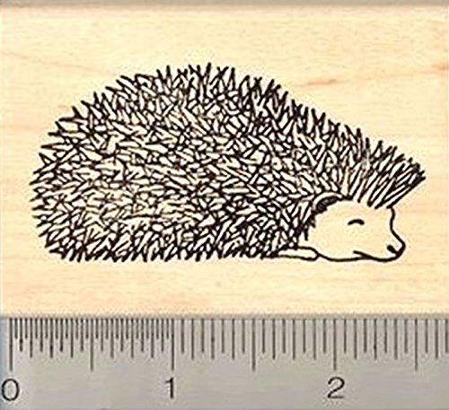 Prickly Hedgehog Rubber Stamp, African Pygmy Hog