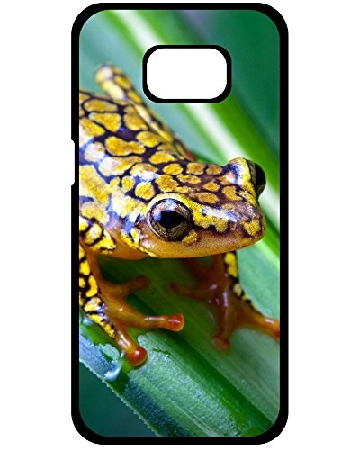 (Personality pictures Elegant Harlequin Poison Dart Frog Hard Plastic Case For Samsung Galaxy S8+ Plus (Harlequin Poison Dart Frog) For Design By [Zhao Liang] )