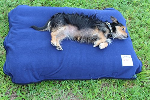 dog air mattress - 2