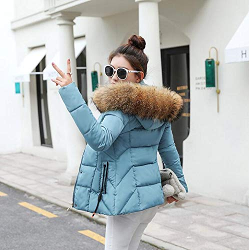 VYVERN Winter Jacket Women Parkas for Coat Fashion Female Down Jacket with A Hood Large (Light Blue 2, XXL) at Amazon Womens Coats Shop