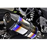 ビームスモーターカンパニー R-EVOカーボン スリップオン GSX250R 17 (G335-53-P2J) Cr