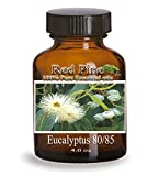 Eucalyptus 80/85 Essential Oil - Eucalyptus globulus - 100% Pure Therapeutic Grade - Essential Oil from Flora Power by Red Pine, Inc. (120 mL - 4 oz)