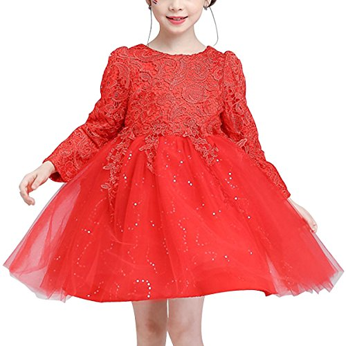 HAWEE Fairy Princess Dress Tulle Tutu Skirt Long Sleeve For Wedding, Party, Show