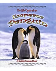 Emperor Penguin (The Life Cycle)