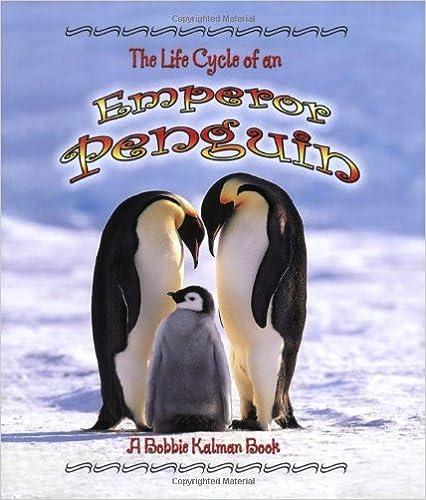 BIRDS OF PREY - BOOKS 51K4q7F8ZWL._SX424_BO1,204,203,200_