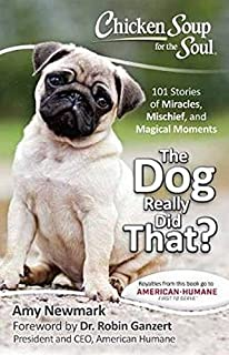 Chicken Soup For The Soul What I Learned From The Dog 101 Stories
