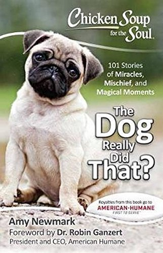 Chicken Soup for the Soul: The Dog Really Did That?: 101 Stories of Miracles, Mischief and Magical Moments