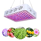 Plant LED Grow Light Full Spectrum 300W Reflector LED Grow Lamp with Heatproof Casing for Greenhouse Hydroponic Indoor Plant Growth by Lightimetunnel