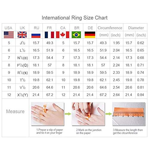 Balakie Wedding Band Rhinestone Floral Carved Zircon Anniversary Valentine\'s Day Rings Jewelry for Women (Silver, 5)