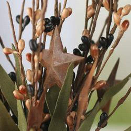 (Inspiration for A Project Ornament 12'' Black & Tan Pip Berry Stems/Picks with Rusty Tin Stars DIY Rustic Primitive Decor Ideas)